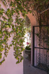 Linda Ronstadt's Tucson home