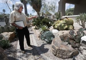 Mineral dealer cultivates cactus and succulent collection