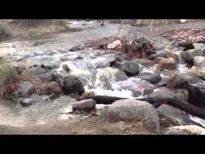 Water flowing at Madera Canyon