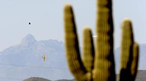 Saguaro National Park ranks 12th on list of most polluted