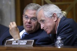 Congreso: respaldo con reservas a plan de Siria