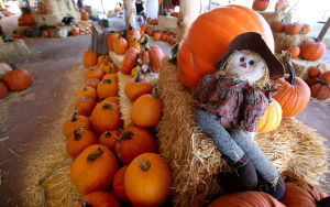 A farewell to Tucson's 'Warmtober'
