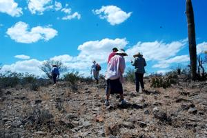 Food tour looks at 4,000 years of Tucson farming