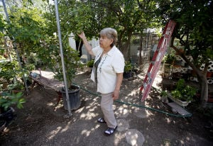 Neto's Tucson: Famed gardener faces circle of life