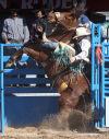 2013 Fiesta de los Vaqueros, Day 1