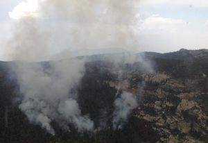 Wildfire in Rincons will be managed