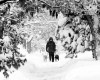 Big snowstorm marches into Nebraska after pounding Utah, Wyoming, Colorado