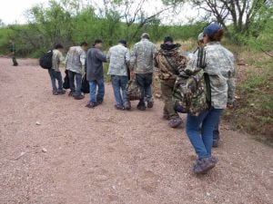 Border agents make 15 arrests in 12 days