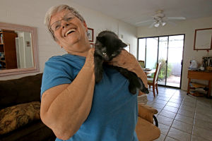 Getting a good start: Foster parent raises kittens
