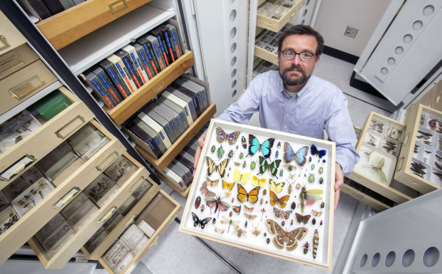 Gene Hall showing collection