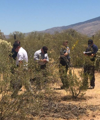 Human bones found in east-side desert area