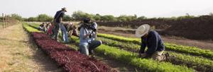 Award-winning food systems documentary premieres on tucson.com