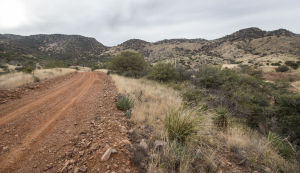 Maricopa judge overturns Rosemont mine's air permit