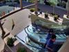 Purse thief strikes at La Encantada