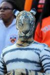 Princeton fan