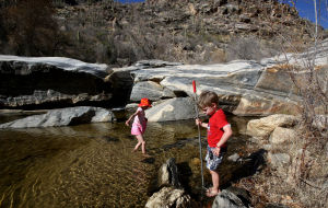 Photos: Snow melt brings life to Sabino Creek