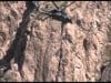 Customs helicopter rescues illegal immigrant off cliff in S. Arizona