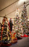 Annual Festival of Trees