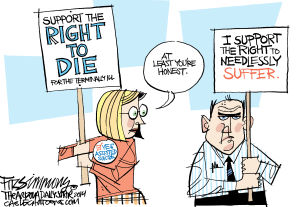Fitz Cartoon Extra: Right to suffer