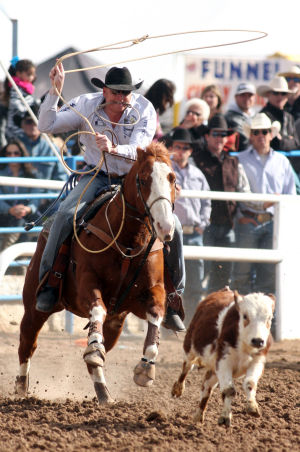 Fiesta De Los Vaqueros: Curtis Cassidy from Donalda, Alberta, Canada, gets ready to rope his steer during the tie-down roping event.  - Randy Metcalf/The Explorer
