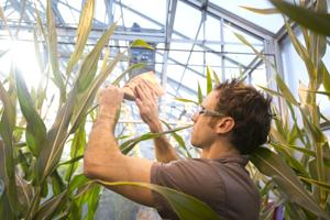 County to hold community meetings on Monsanto greenhouse project