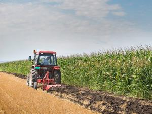 Monsanto opponents continue to fight project