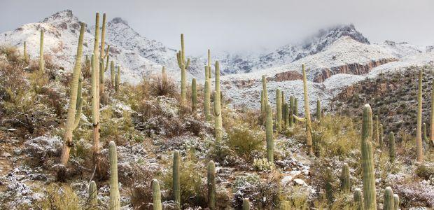 Tucson desert mountains