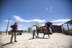 Wild Hearts Rescue Ranch