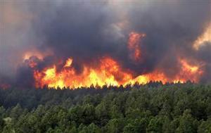 Colorado fires
