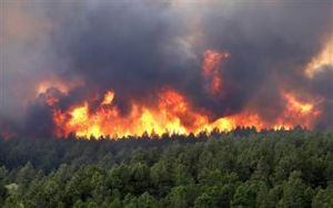 Colorado Fires - NBC News