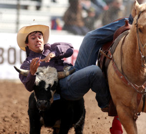 Fiesta De Los Vaqueros: Dirk Tavenner from Rigby, Idaho jumps from his horse to a steer during the steer-wrestling event Friday.  - Randy Metcalf/The Explorer