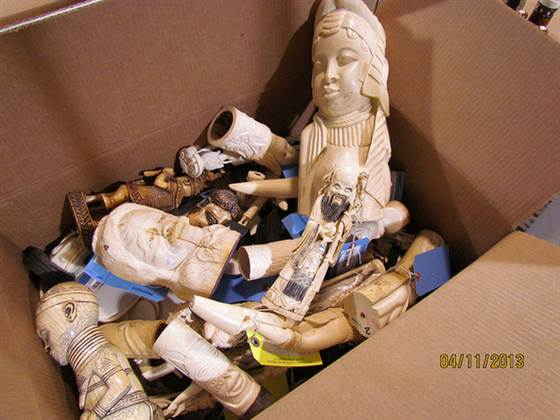 Illegal ivory