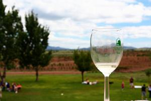 HarvestFest at Sonoita Vineyards