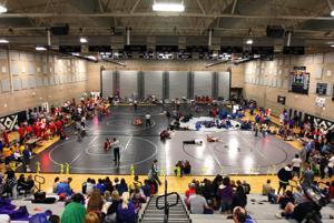 MVHS Wrestling 3