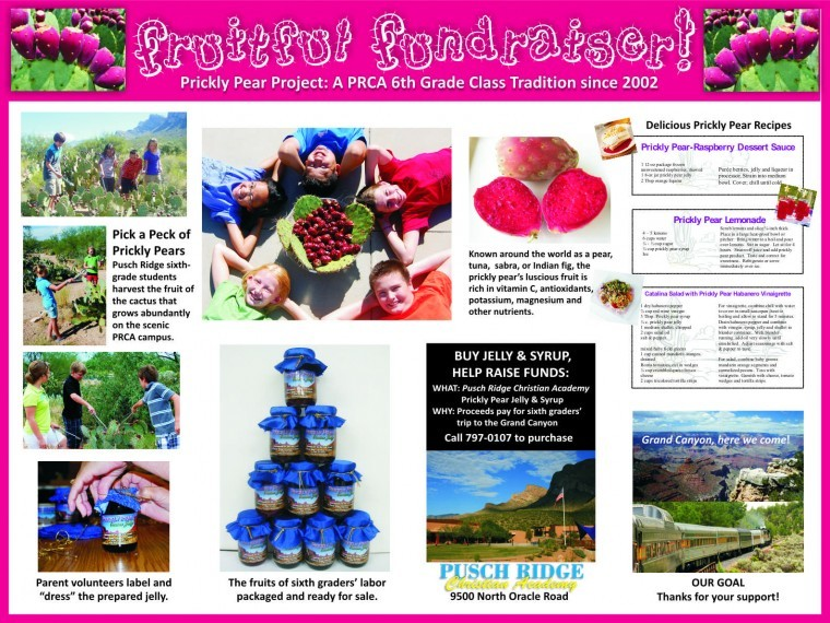 Operation Prickly Pear
