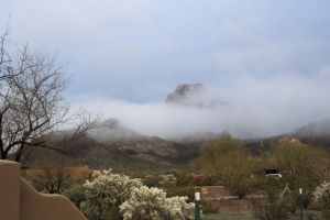 Snow Day: In Marana, a snow-covered Sombrero Peak is partially masked by fog.  - Brandon Hays/The Explorer