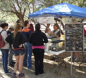 Volunteering at Catalina State Park