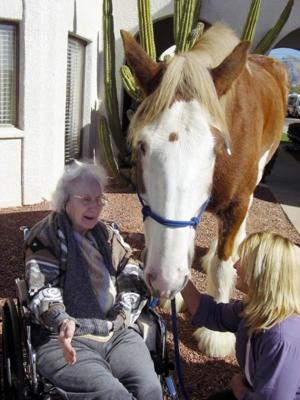 Healing, respite from horses