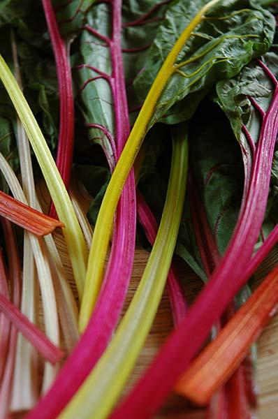 Healthy plate: Give chard a chance