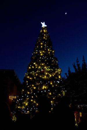 Marana adds extra Christmas tree light shows