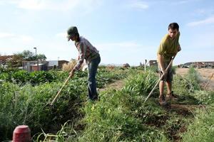 Farm's youth program gets grant award