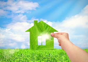 What does 'going green' mean to homebuyers?