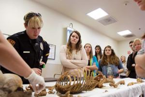 Canyon Del Oro High School Forensics