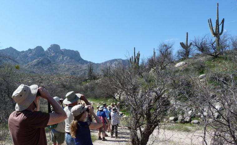 Visitors to Catalina State Park