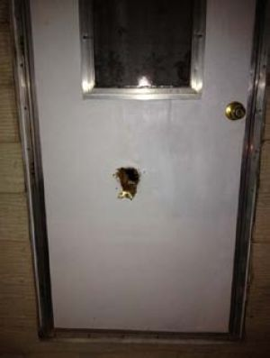 Homeowner Shoots Robbery/home Invasion Suspect: The homeowner used a shotgun and fired one round through his backdoor.