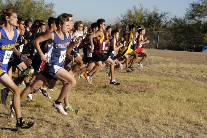 Pusch Ridge teams sweep sectionals