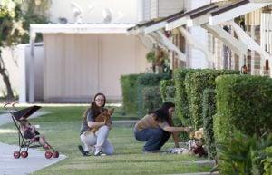 Neighbors Of Victims Make A Memorial