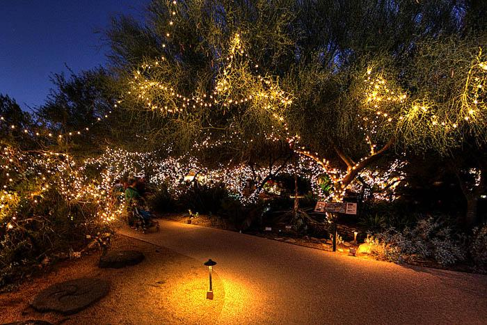 Holiday lights at Tohono Chul Park 2