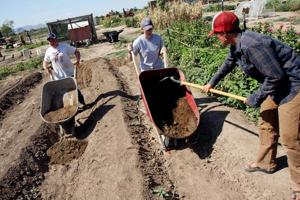 Applicants needed for spring's apprenticeships at Marana farm