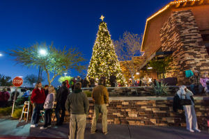 Oro Valley Holiday Tree Lighting Celebration: Residents gaze in awe at the Oro Valley Holiday Tree as it is lit up. - J.D. Fitzgerald/The Explorer